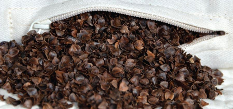Benefits of Buckwheat Pillows