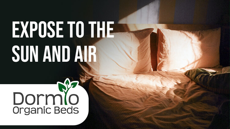 Expose mattress to the Sun and Air