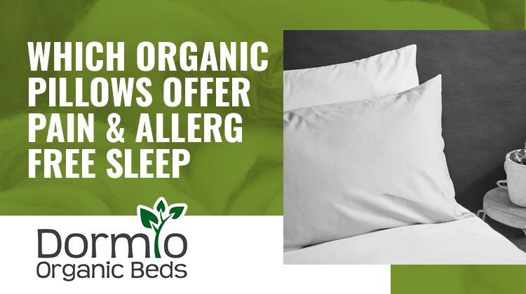 Which Organic Pillows Offer Pain & Allergy-Free Sleep