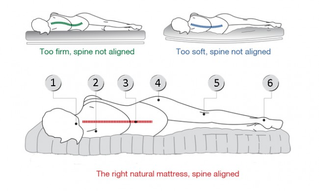 spinal-alignment